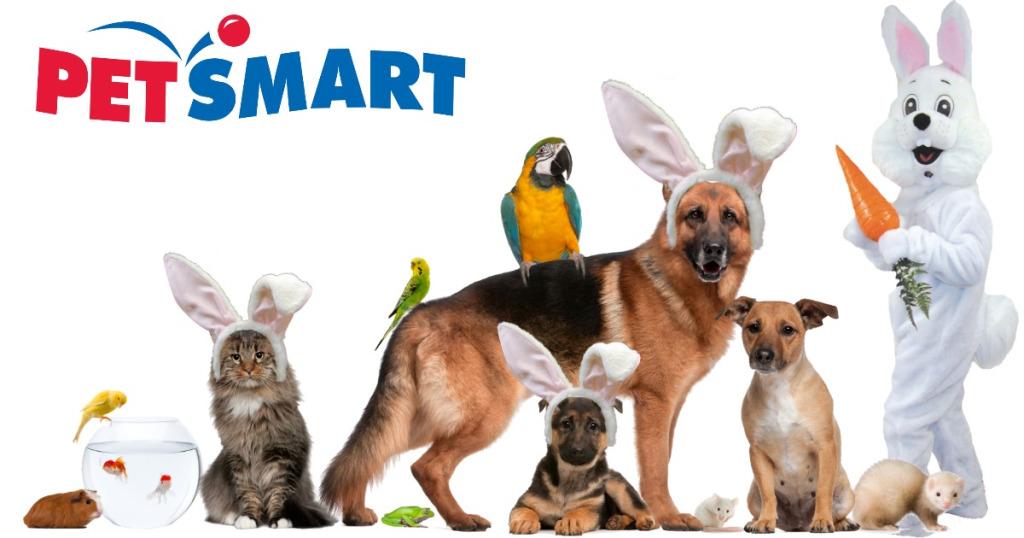petsmart pets image